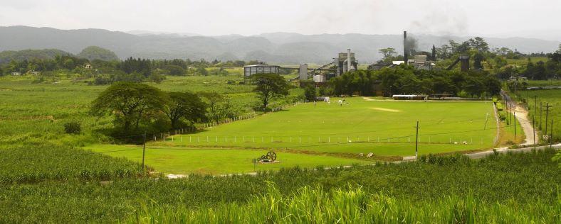 appleton estate, jamajský rum, nassau valley