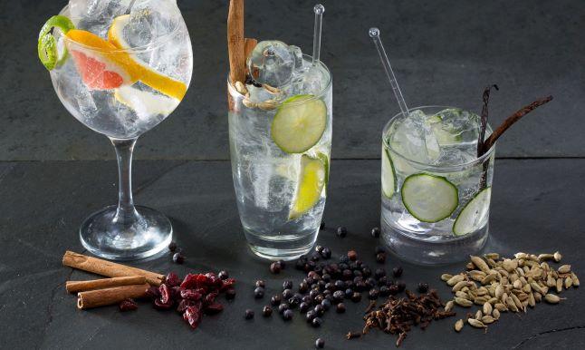 gin, jalovec, ingredience, sklenice na gin